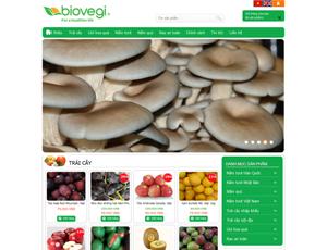 Thiết kế website thương mại điện tử 6
