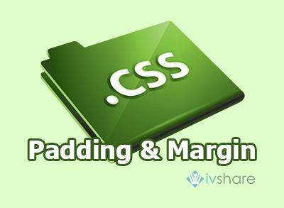 Bài 8: Các thuộc tính của margin