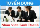 Tuyển nhân viên kinh doanh website